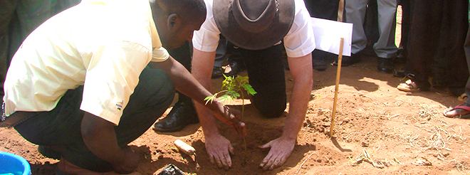 reforestation-malawi.jpg